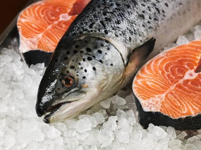 Рыбные поставки в Россию